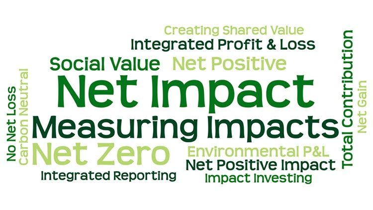 Net Impact Approaches: Bringing the stands together conference