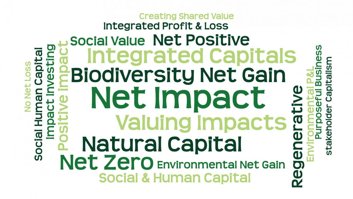 Net Impact Approaches Conference 20th May 2020 – Rescheduled